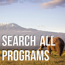 SEARCH ALL PROGRAMS
